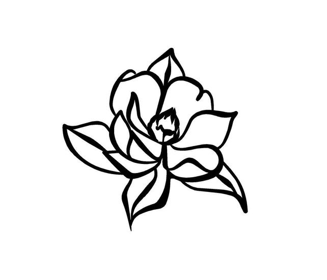 642x550 magnolia decal magnolia flower decal floral decal car yeti etsy