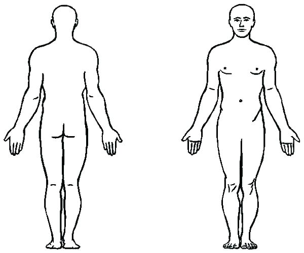 600x500 body outline templates doc free premium templates woman body