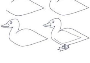 300x210 drawing easy duck draw donald duck donald duck the main man