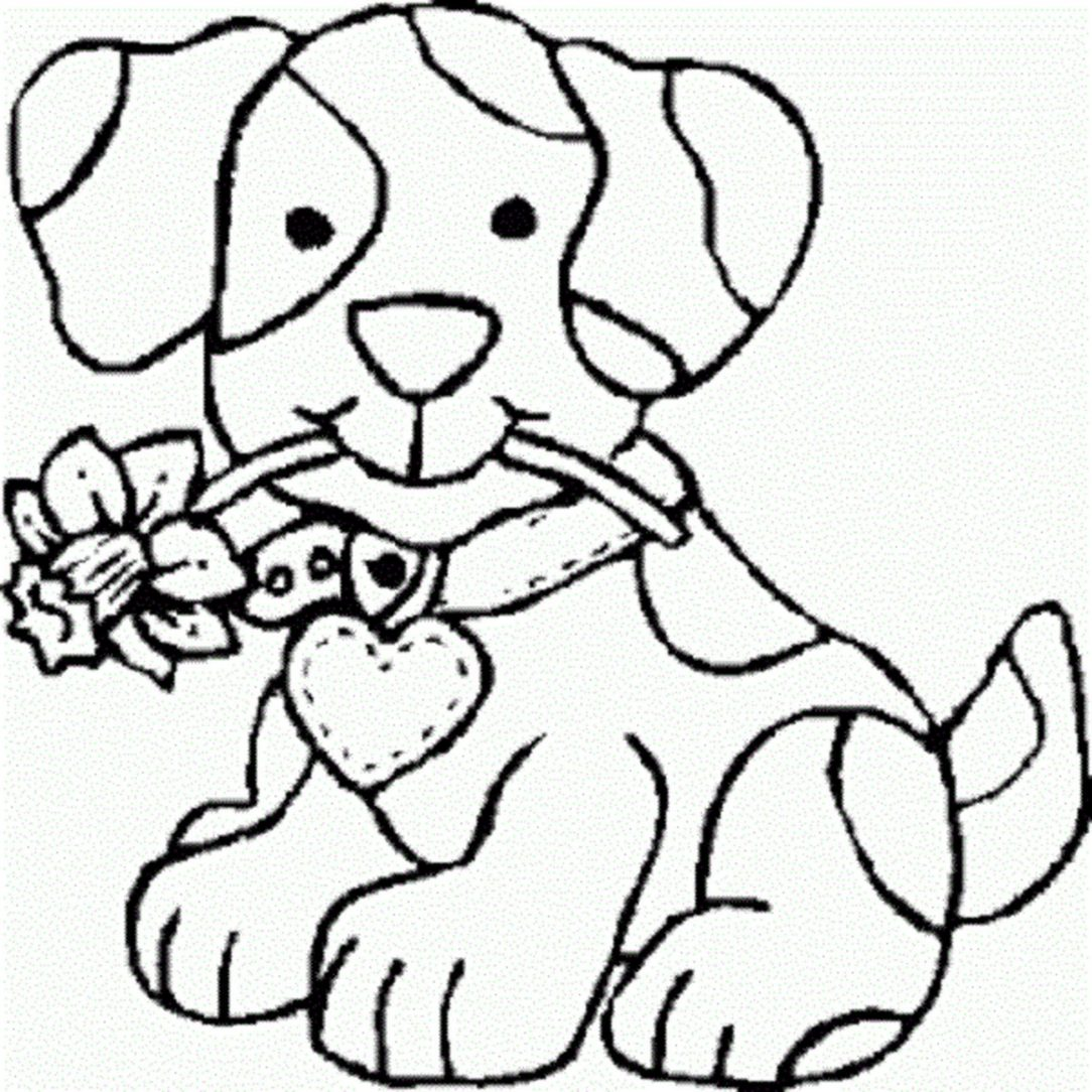 1084x1084 Dog And Cat Drawing Images Chasing Man Kid Pictures A Outline I