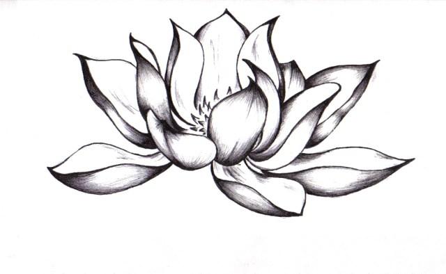 Mandala Lotus Flower Drawing