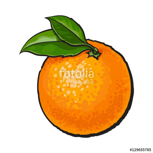 500x500 Orange Drawing For Free Download