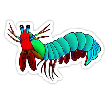 375x360 Mantis Shrimp Cartoon Clip Art