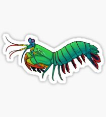 210x230 Mantis Shrimp Stickers Redbubble