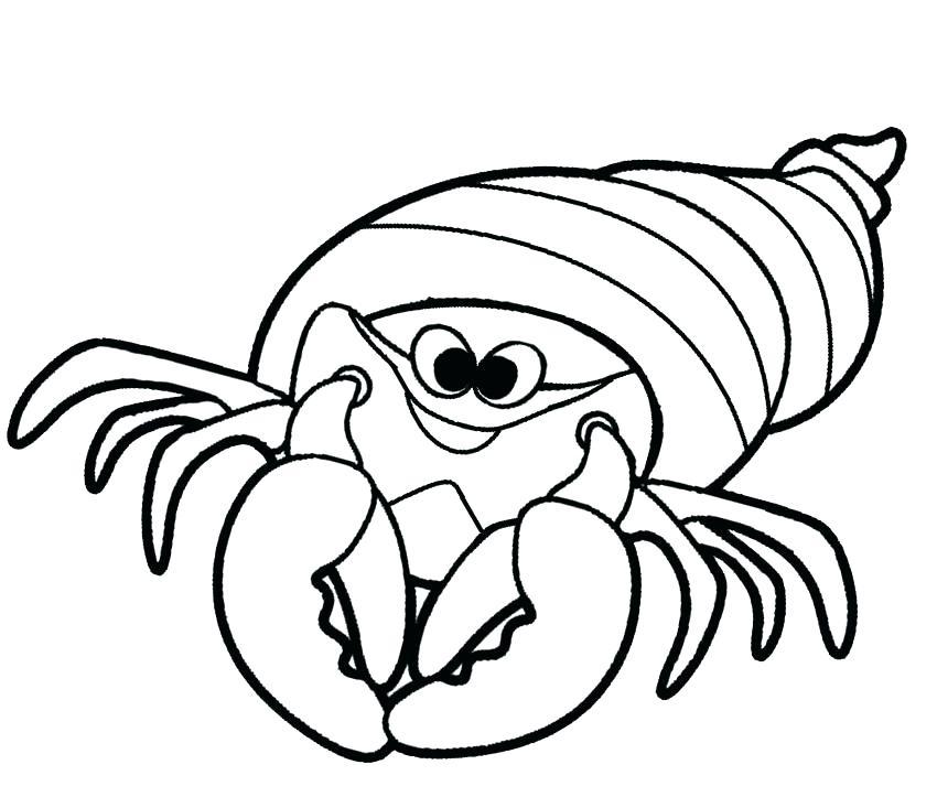 850x723 Shrimp Coloring Plankton Shrimp In Coloring
