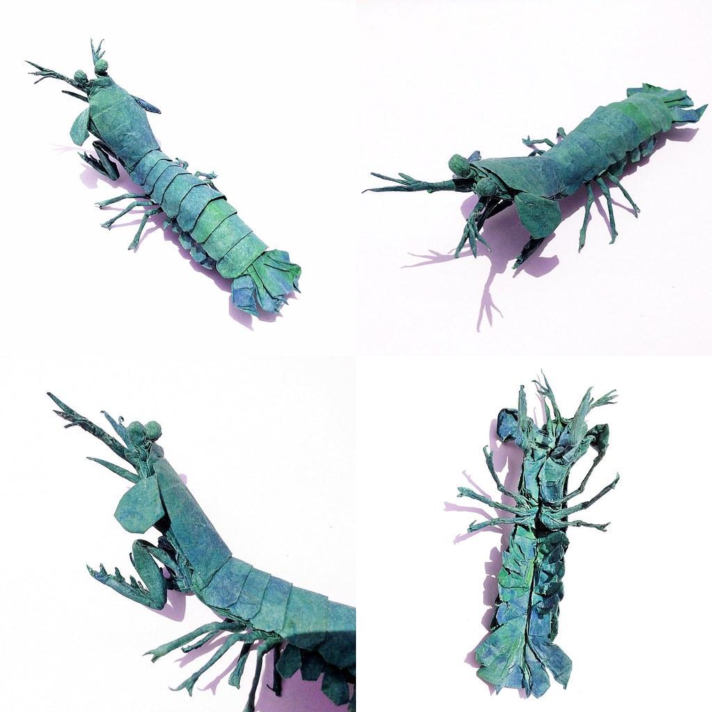 1024x1024 Peacock Mantis Shrimp Design