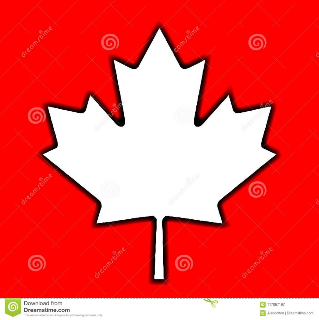 1022x1024 Happy Canadian Maple Leaf Outline Drawing On Red Stock Vector