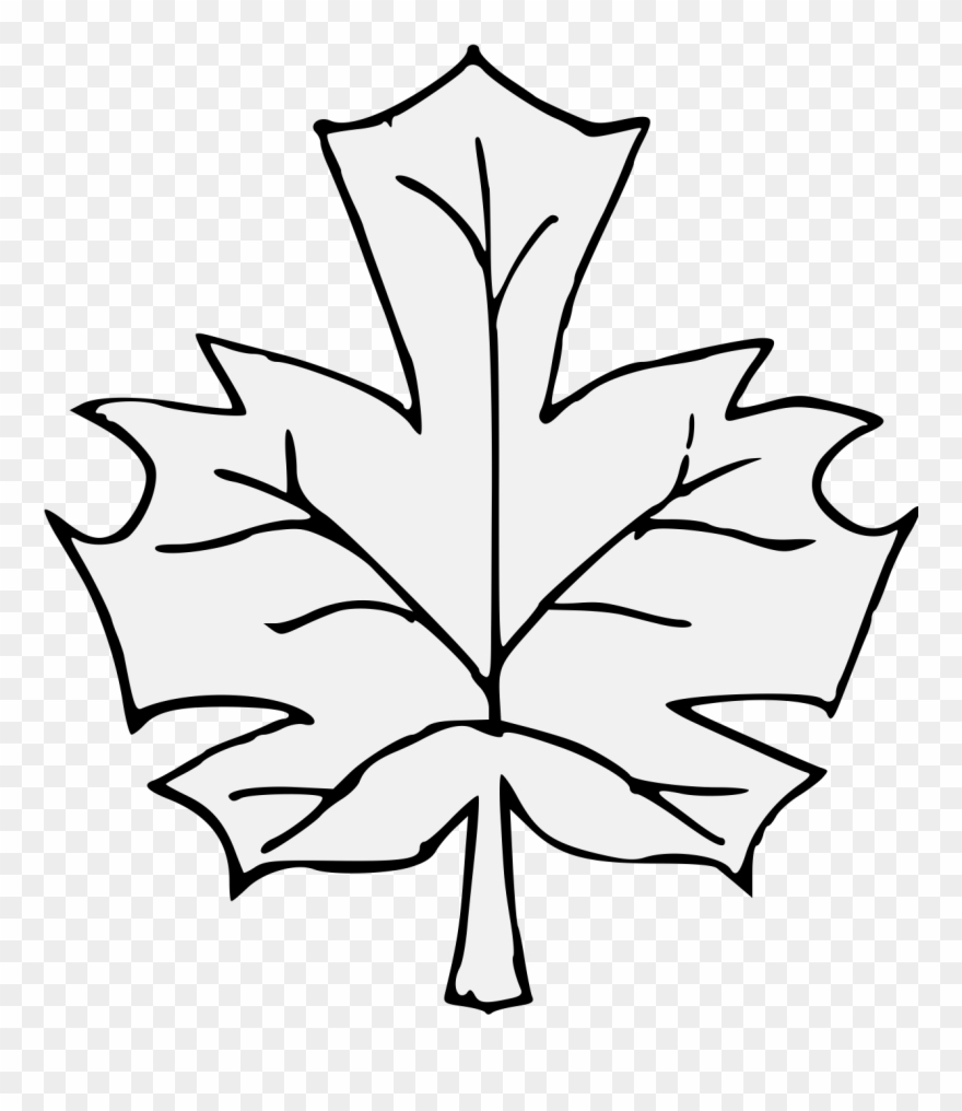 880x1016 Maple Leaf