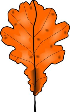 236x379 Maple Leaf Clipart Leaf Drawing
