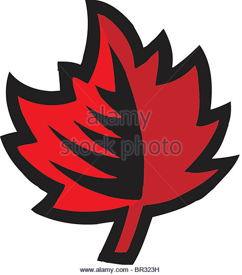 474x540 Maple Leaf Clipart Leaf Drawing