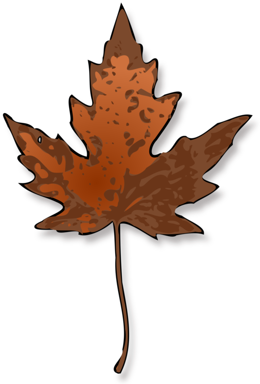 508x750 Maple Leaf Autumn Leaf Color Red Maple Drawing Cc0