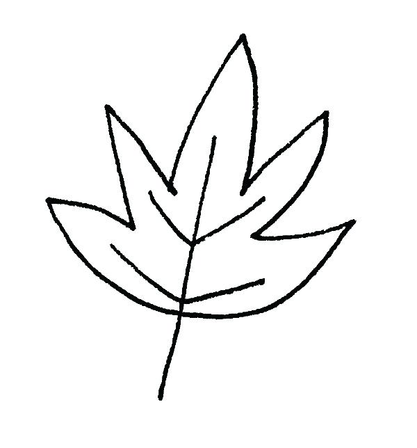 600x644 Easy Leaf Drawing