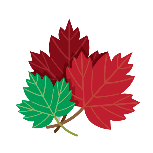 500x500 Drawing Of Red And Green Maple Leaves Png Image