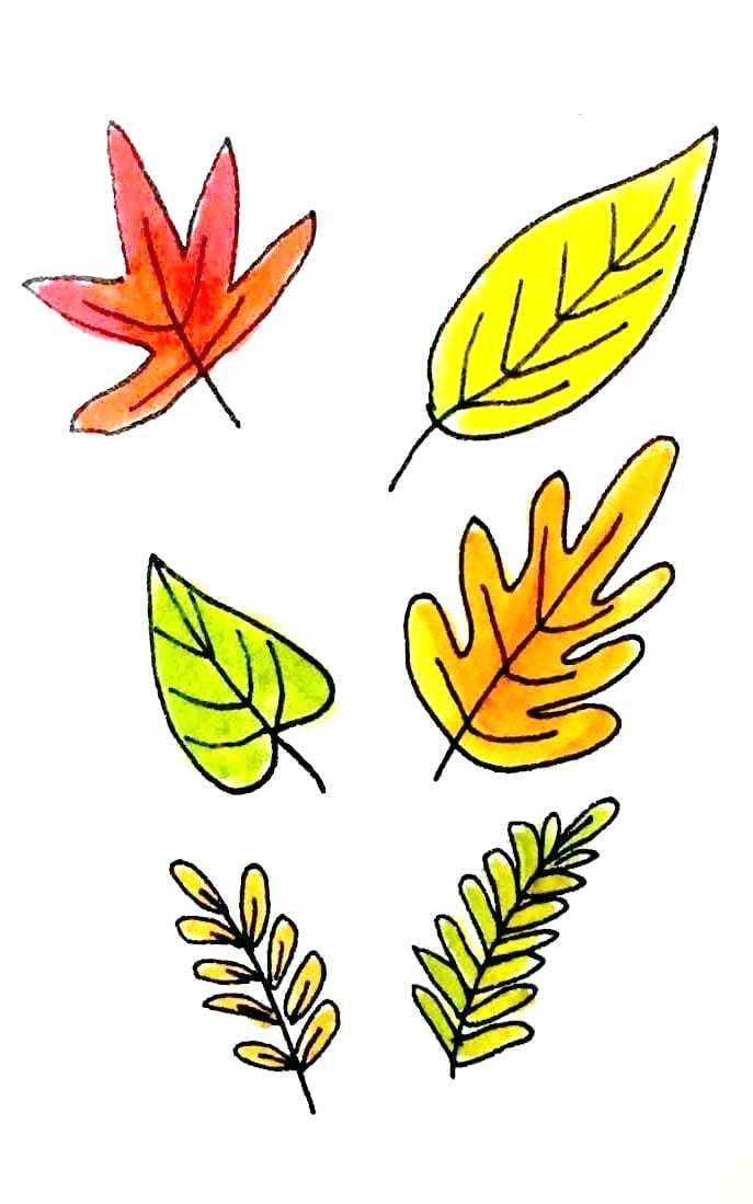 687x1099 Fall Leaves Drawing Drawn Maple Leaf Fall Leaves Autumn Leaves