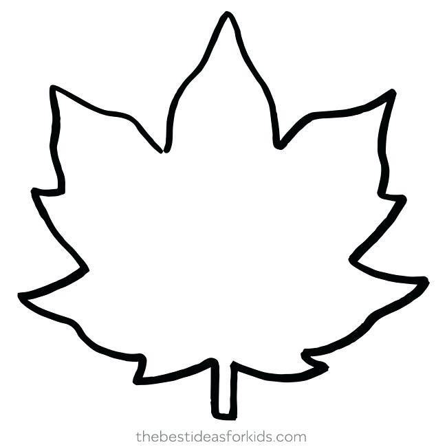 650x650 Leaf Outlines Clover Clip Art Leaf Clip Art Leaf Outlines Twinkl