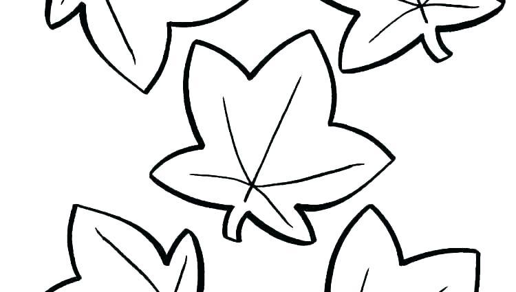 750x425 Maple Leaf Printable Pumpkin Leaves Template Leaf Printable Maple