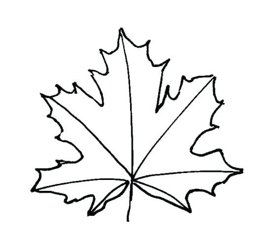 550x495 Maple Leaf Stencil Printable Coloring Template Stencils Pumpkin