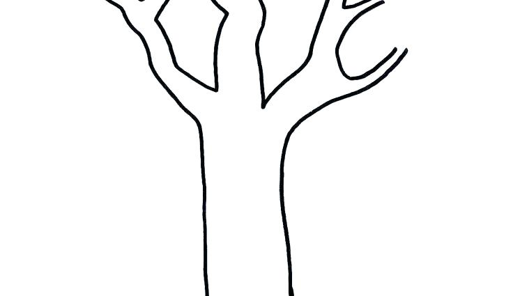 736x425 Cute Tree Cute Tree Drawing Hand Drawn Cute Tree With Doodles