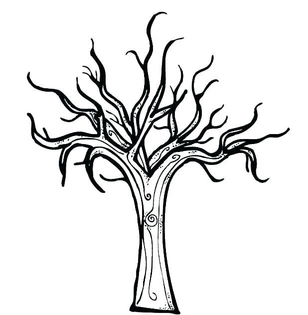 618x632 Maple Tree Coloring