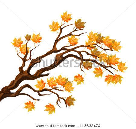 450x427 Maple Branch Clipart