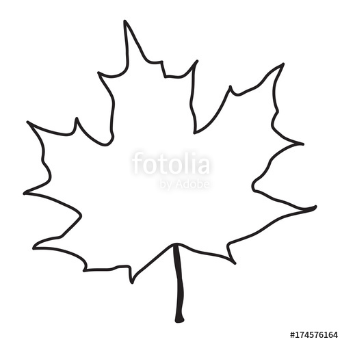 500x500 This Is A Vector Line Drawing Of A Maple Leaf Stock Image