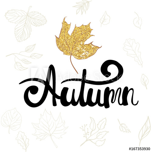 500x500 Autumn Hand Lettering Phrase Autumn Words On The Drawing Of Maple