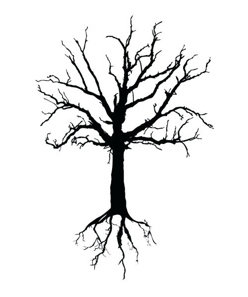500x598 bare tree drawing coloring bare tree drawing free printable