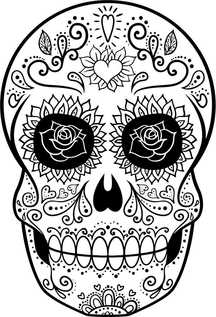 736x1080 Skeleton Mariachi Drawing
