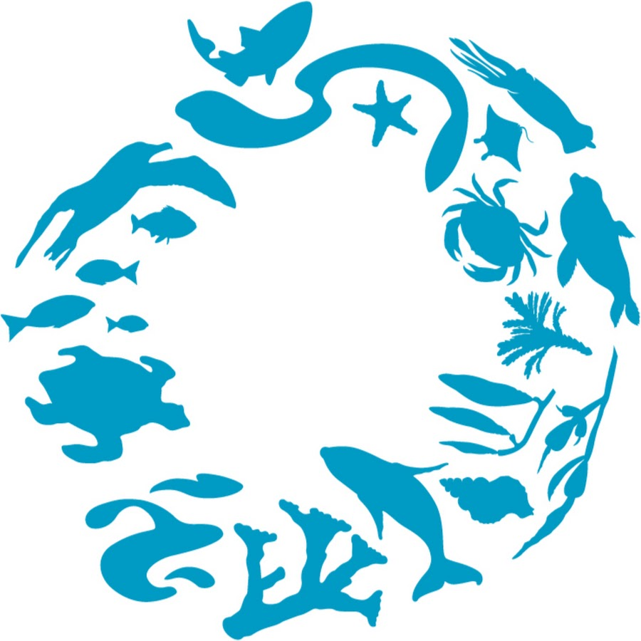 900x900 ocean conservancy ocean legacies