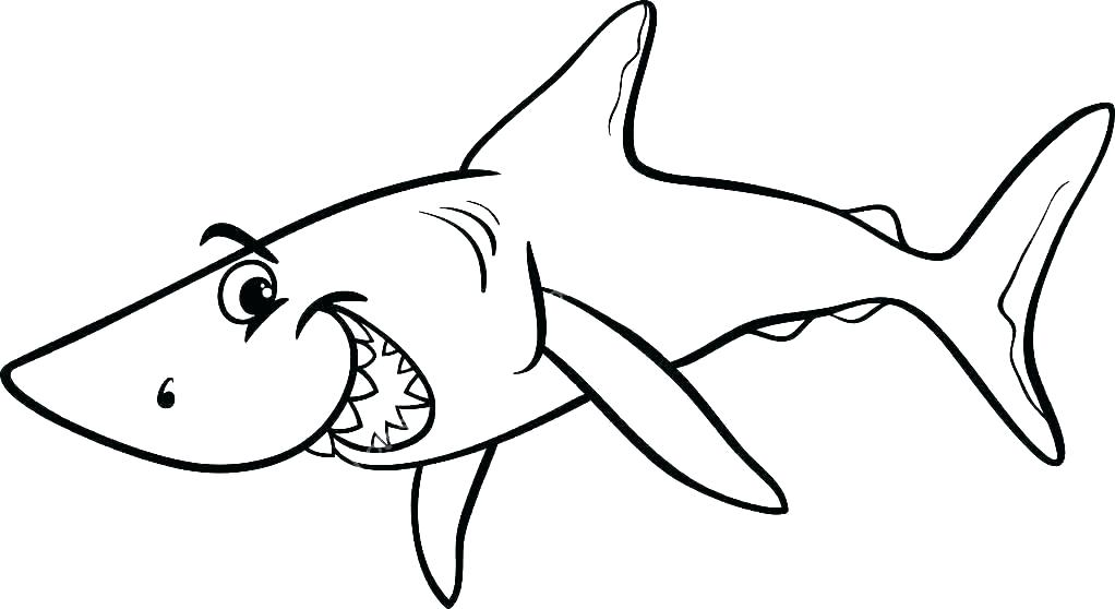 Megalodon Shark Drawing | Free download on ClipArtMag