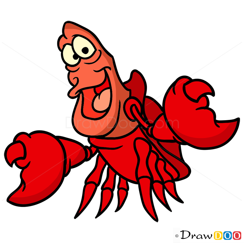 800x799 How To Draw Sebastian, Mermaids