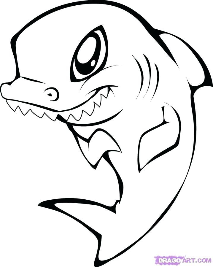 718x900 Shark Drawings Step