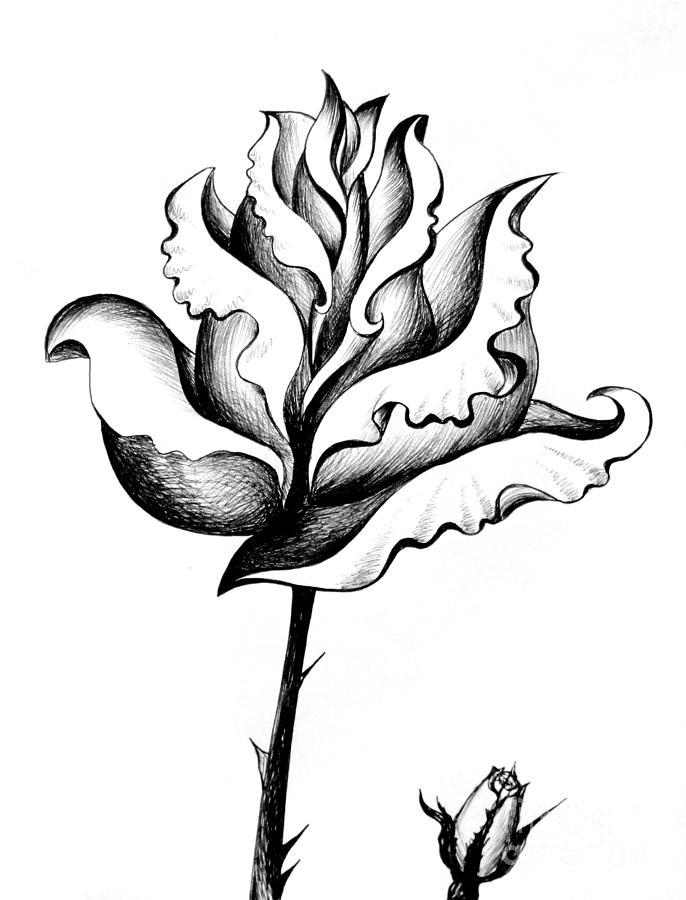 686x900 Black White Rose Pencil Art Drawing