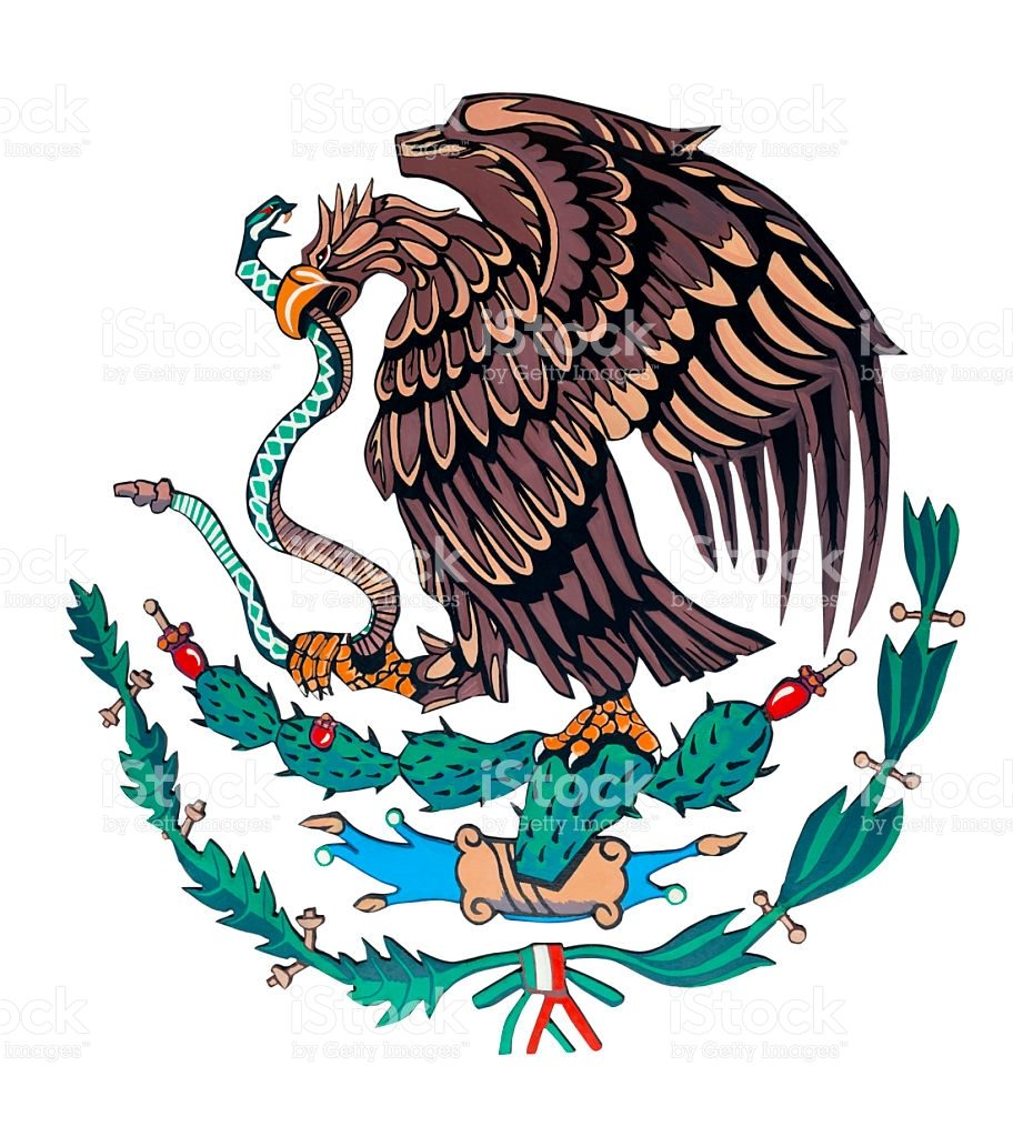 graphic regarding Mexican Flag Eagle Printable named Mexican Eagle Drawing Cost-free obtain simplest Mexican Eagle