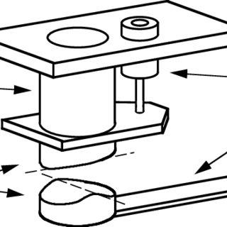 Microscope Drawing Template