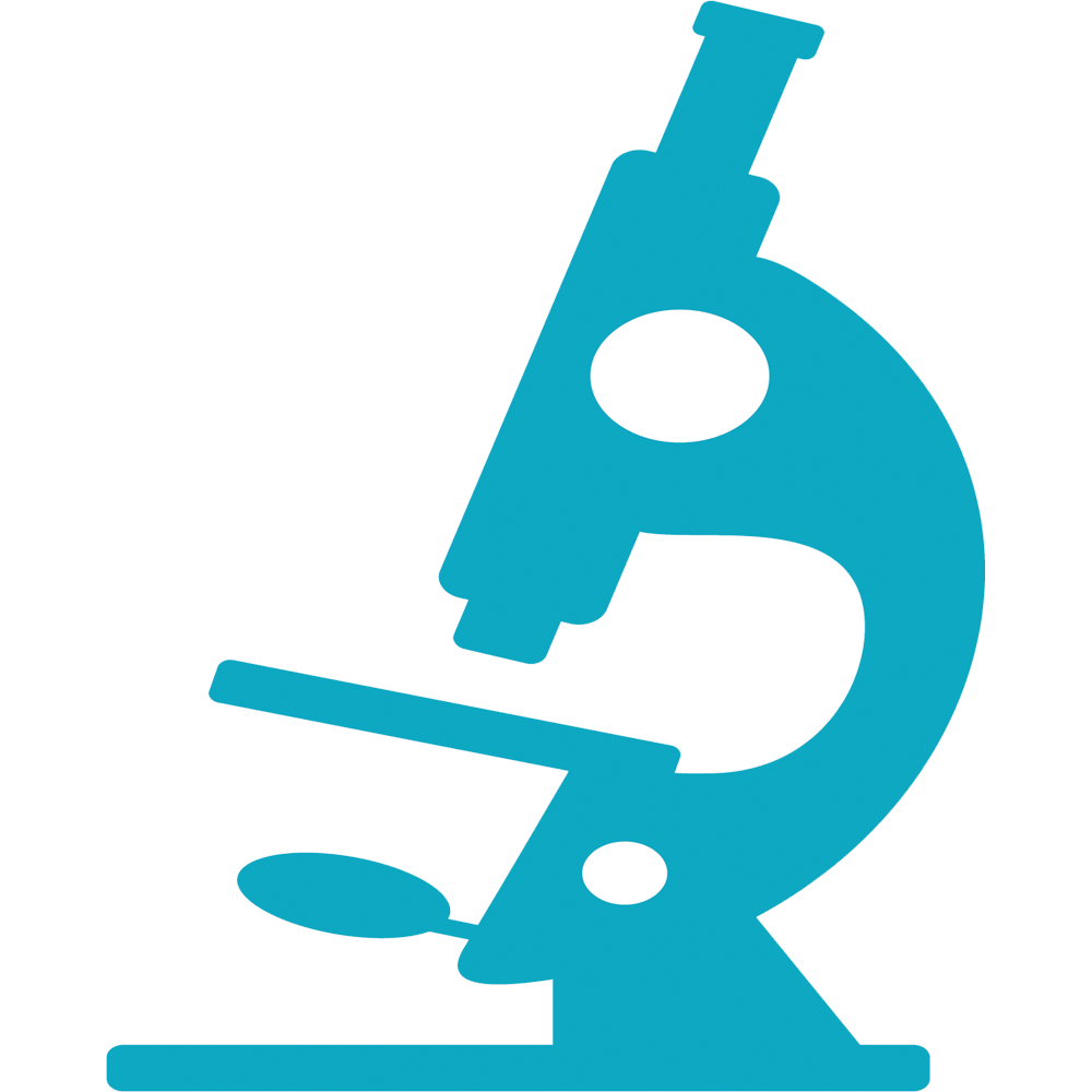 Microscope Easy Drawing
