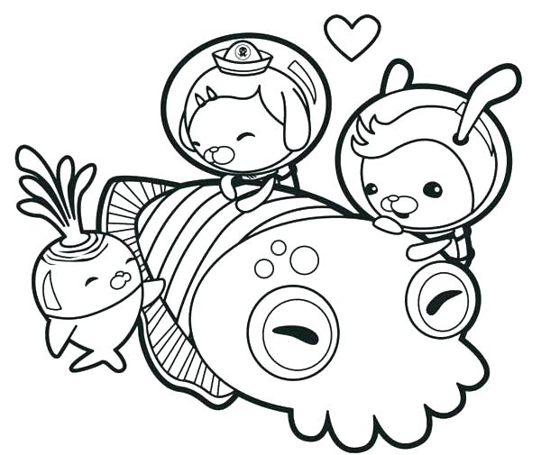 600x505 squid coloring pages collection of giant squid coloring pages