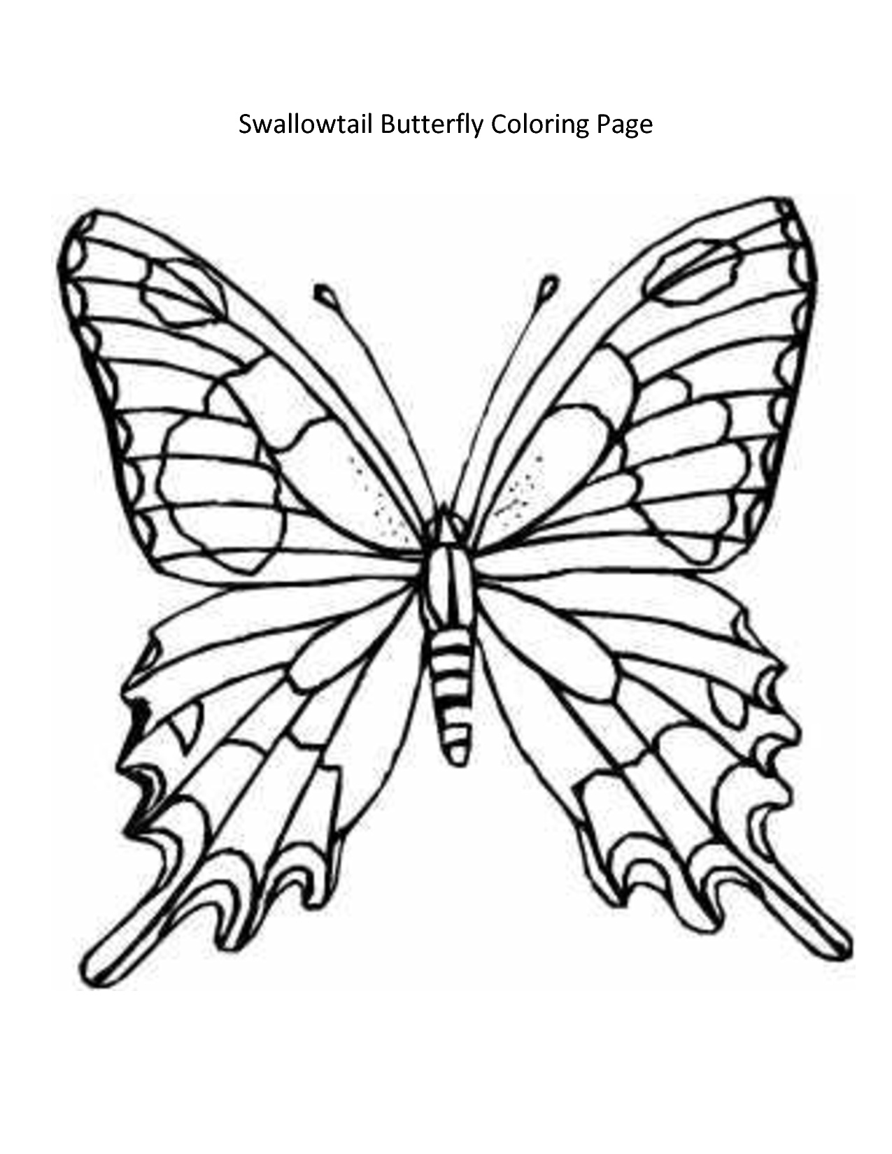 1275x1650 Arts Butterfly Outline Drawing Good Looking Free Monarch