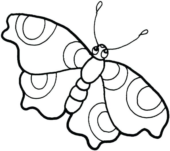 592x525 Butterfly Images Drawings Monarch Butterfly Black And White