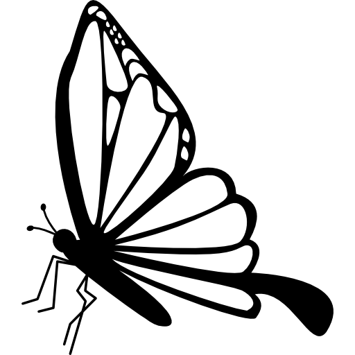 512x512 Collection Of Free Drawing Butterflies Side Download On Ui Ex