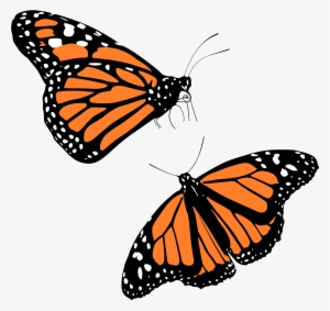 300x283 monarch butterfly png download transparent monarch butterfly png