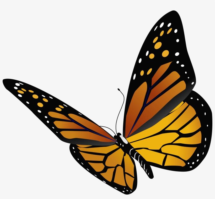 820x762 Monarch Butterfly Transparent Background Transparent Png