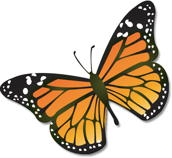 587x539 monarch butterfly usgs primary butterfly clip art, butterfly