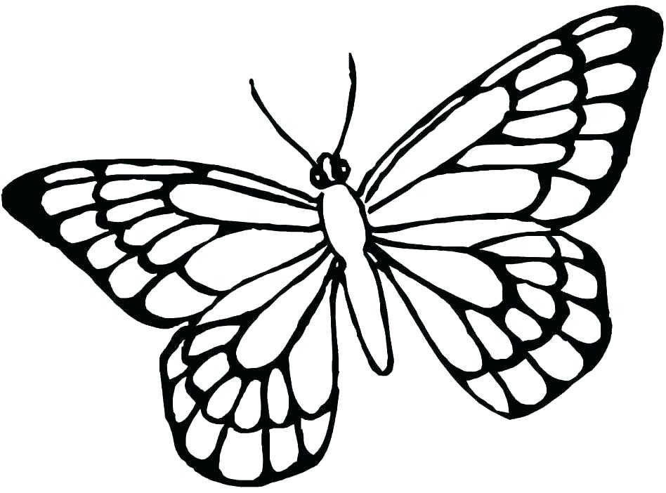 948x702 Butterfly Templates Printable Crafts Colouring Pages Free