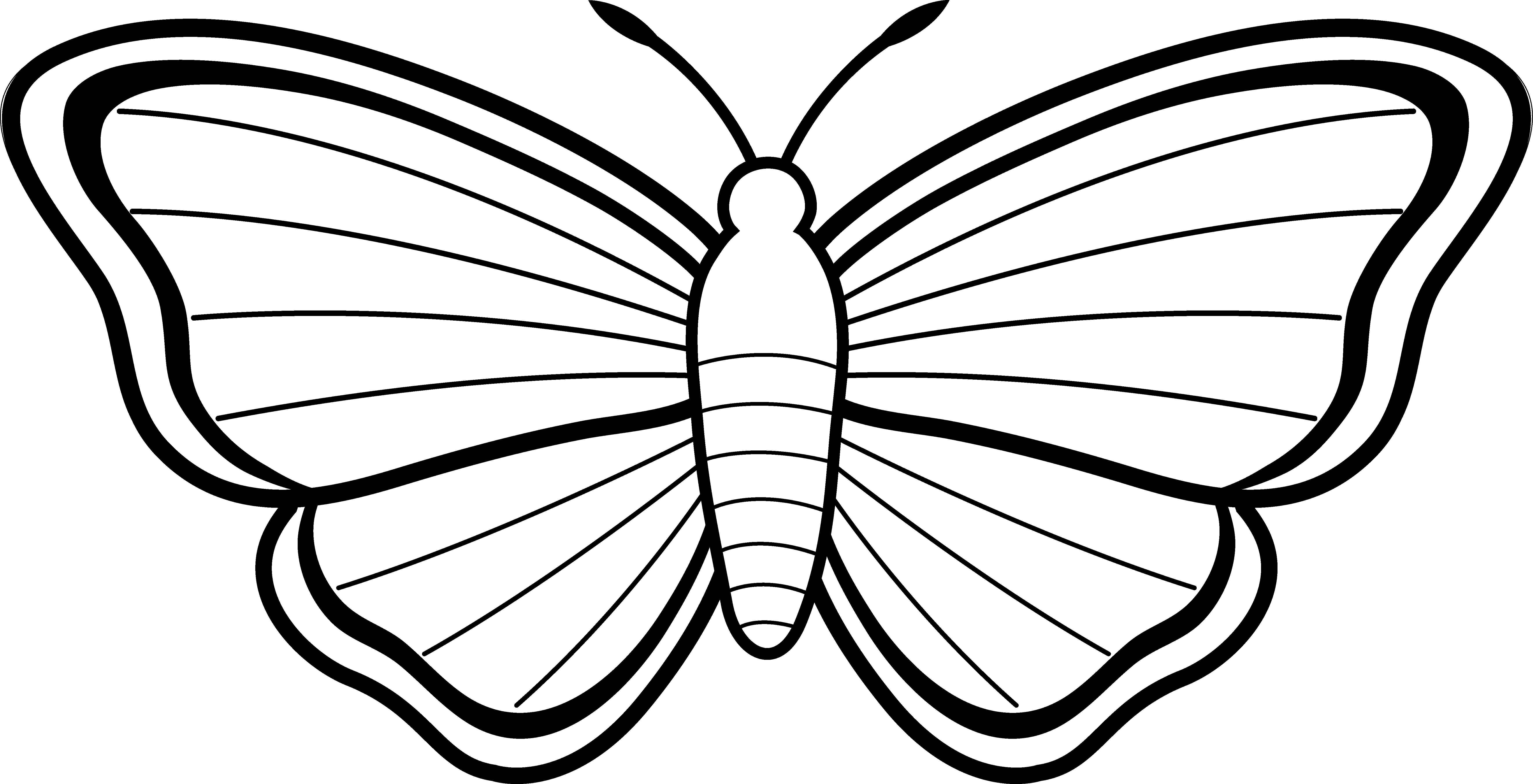 6978x3573 Butterfly Wings Black White Clipart