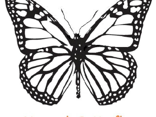 640x480 Line Art Clipart Monarch Butterfly