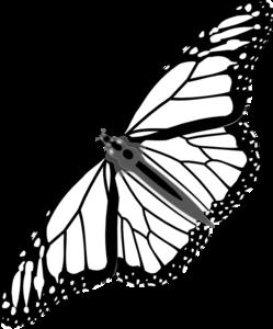 249x300 Monarch Butterfly Bw No Shadow Clip Art