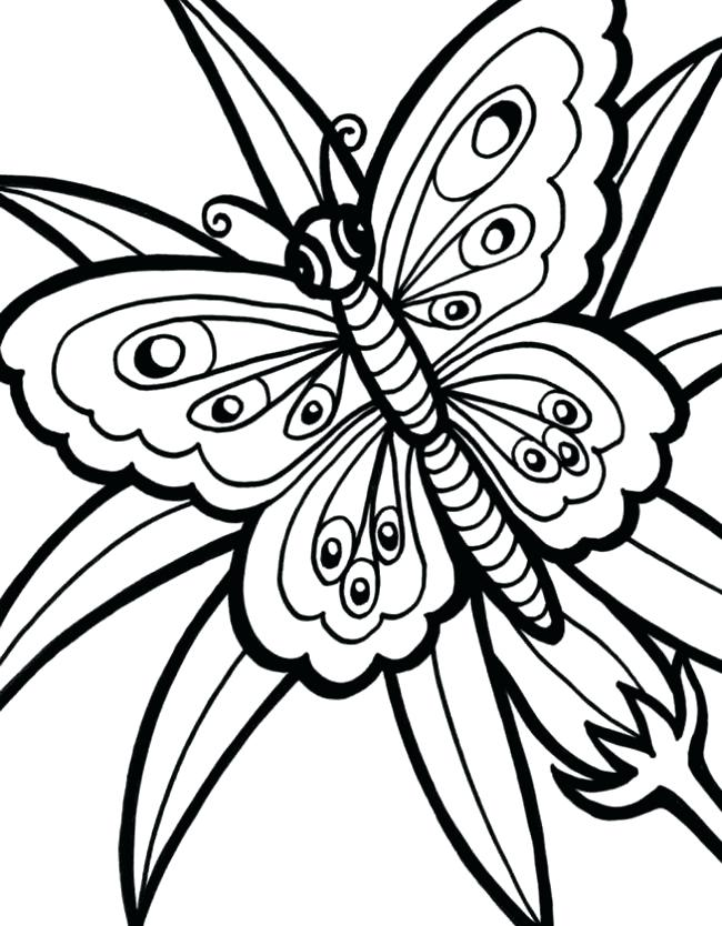 650x834 Monarch Butterfly Line Drawing Printable Templates And Template