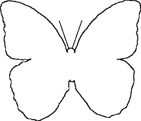 456x391 Monarch Butterfly Outline Drawing Clip Art Butterflies Black