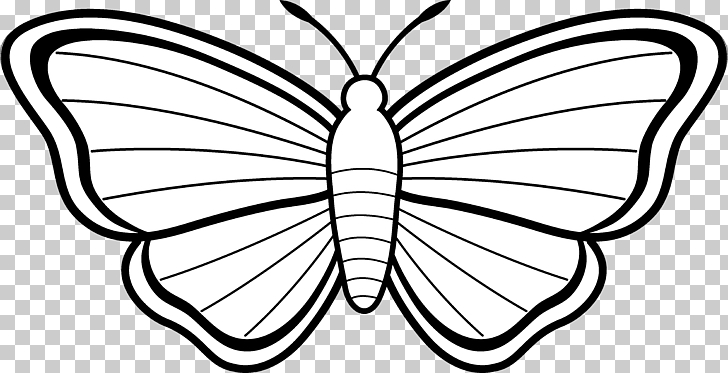 728x373 Monarch Butterfly Coloring Book Drawing Butterfly Png Clipart